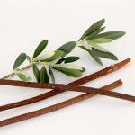 olive, salvadora persica, miswak, buy , online , fresh , high quality, zatoon, peelu, dental care ,